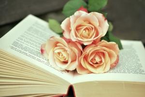 Bella Vista Book Club