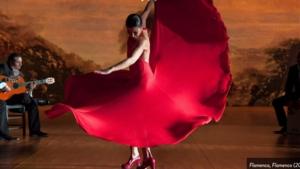 Flamenco, Flamenco Screening and Discussion