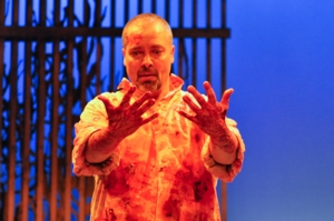 Shakespeare in the World: Shakespeare and the Violated Body