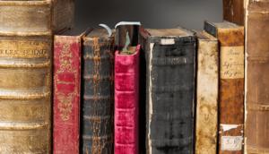 Chestnut Hill Classics Book Group