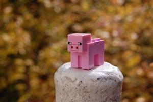 Minecraft Day