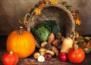 PAFA Children's Art Class – Thanksgiving/Harvest