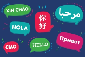 Arabic/English Language and Cultural Exchange
