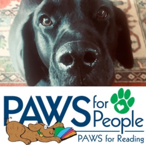 Virtual PAWS for Reading: Read to a Therapy Dog