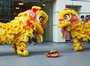 Celebrate Chinese New Year and Welcome the Year of the Rat!