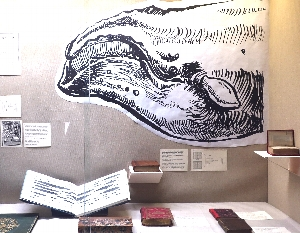 Exhibit tour: Melville and Whitman Illustrated
