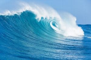 Books & Cooks: Ocean Waves