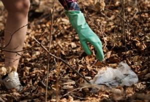 Spring Cleanup Hosted by the Friends of Whitman Library