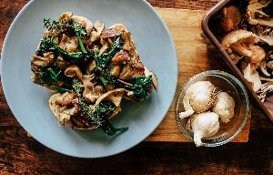 Mushroom Foraging and Feasting