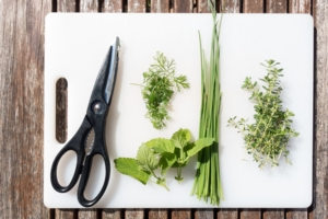 Plant and Seed Swap with the Urban Gardener