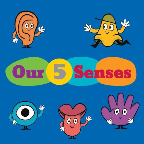 Stop by the third floor of the Parkway Central Library to explore your senses!
