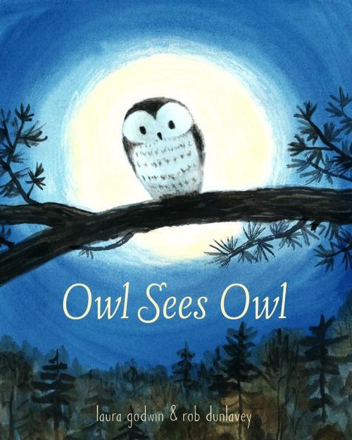 Owl Sees Owl by Laura Godwin; illustrated by Rob Dunlavey