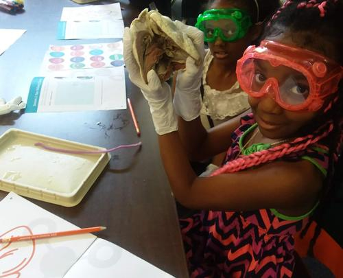 Getting very hands-on with Science at Wynnefield
