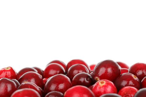 Cranberries and Apples with Marisa McClellan, November 23