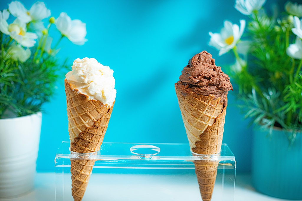 Join us at the Haddington Library on Friday, June 23rd at 2:00 p.m. for an ice cream demonstration, tasting, and celebration.