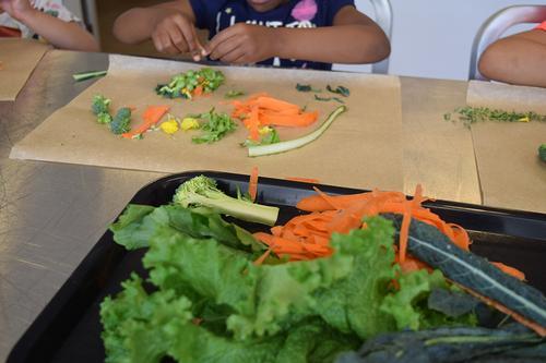 Kindergarten Nourishing Literacy student prepares different parts of the plant.