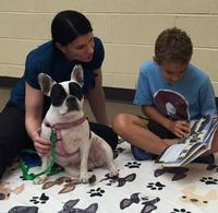 Bella the French Bulldog listens to a reader at the Whitman Library.