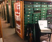 View from the Chamber Music office with a violin from our MIC collection.