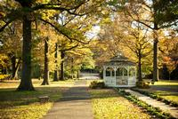 Embedded in our city is beautiful Fairmount Park, accessible by public transit.