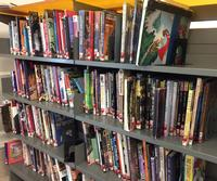 Just a small selection of the comics and graphic novels available in Philbrick Hall at Parkway Central Library.