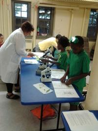 Science in the Summer instructor and students use microscopes to study cells.