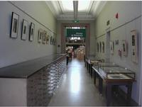 The Print and Picture Collection Hallway Gallery is located on the Second Floor of Parkway Central Library.