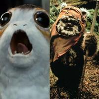 Pro-Porg and Pro-Ewok!