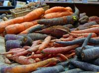 Carrots are a great vegetable to use in blended soups.