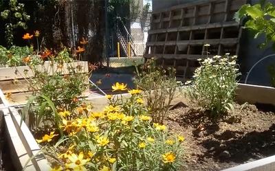 Lillian Marrero Community Garden