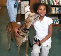 One of the greyhounds kisses a library patron