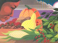 Native American Heritage Month board books and picture books written by and about Native peoples.