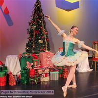 Pages to Pirouettes will bring The Nutcracker to Parkway Central Library on December 11th